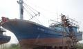 Thông báo đấu giá tàu cá